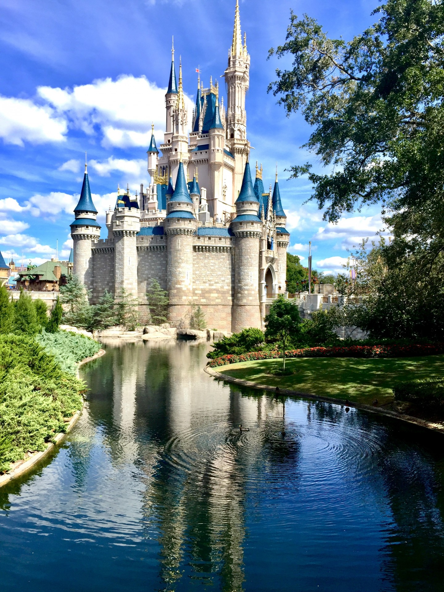 Viajar a Disneyland Paris con alergias alimentarias y menús Natama